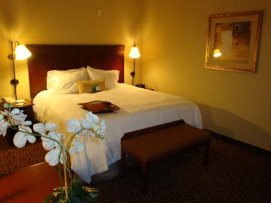 Hampton Inn & Suites Ocala - Belleview: King-sized guest room.