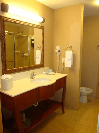 Hampton Inn & Suites Ocala - Belleview: Great bathroom