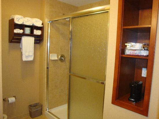هامبتون إن أند سويتس أوكالا - بيليفيو: Thoughtfully designed storage in bath
