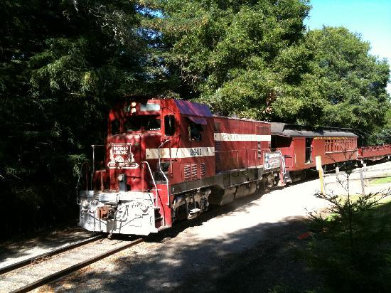 Overview. Explore the Santa Cruz Mountains on a historic train ride through a redwood forest from Roaring Camp in Felton, California. Admire the ancient redwood groves from the comfort of a steam locomotive chugging up the hillside.5/5(42).