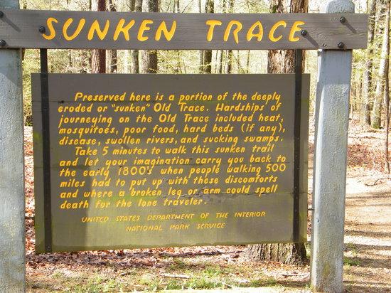 Natchez Trace Parkway : Sunken Trace