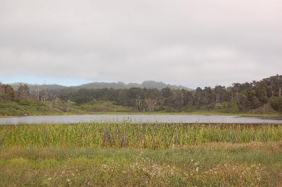 MacKerricher State Park: Lake Cleone, which separates the campground loops