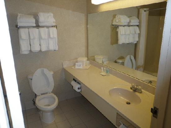 Comfort Suites Longview : Bathroom