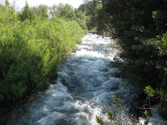 Galilee, Israel: The Dan River