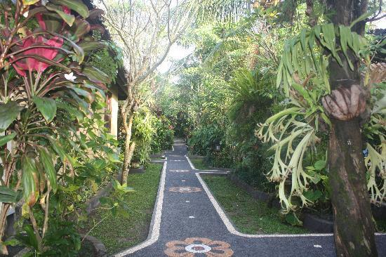 Sama's Cottages and Villas: Enjoy the peace of our lush tropical garden