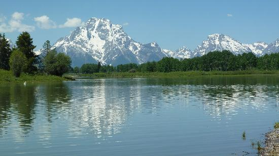 Admire the beauty of Mt. Moran.