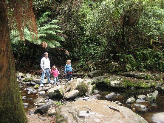 Lorne, Australia: Rock hopping near the falls