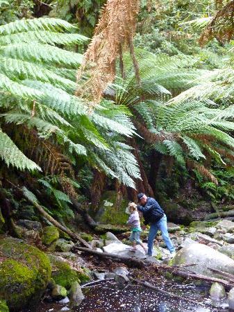 Lorne, Australia: More rock hopping