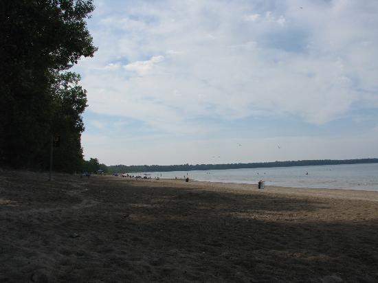 Picton, Canada: Part of the day use beach