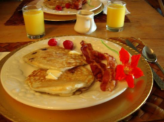 Dream Horse Guesthouse: One of our scrumptious breakfasts.