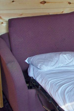 Cabins of Mackinaw: Dirty couch