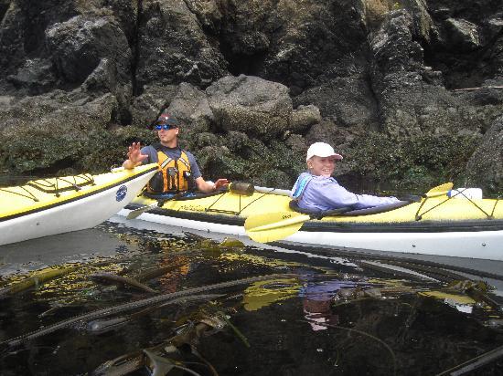 Crystal Seas Kayaking - Day Tours: Kayaking in the kelp bed