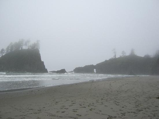 Olympic Suites Inn: Second beach La Push