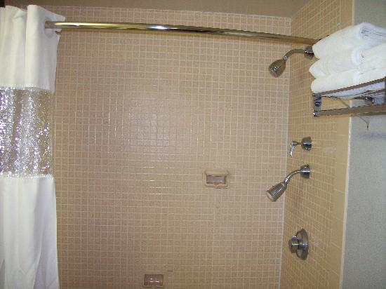 Americas Best Value Inn - Campus View: One at a time dual showerheads