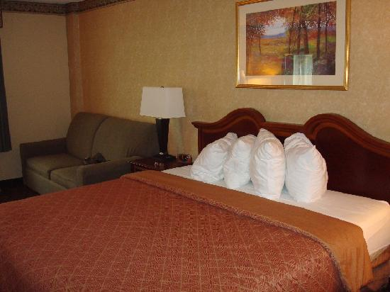 Best Western Plus Towson Baltimore North Hotel & Suites: King bed