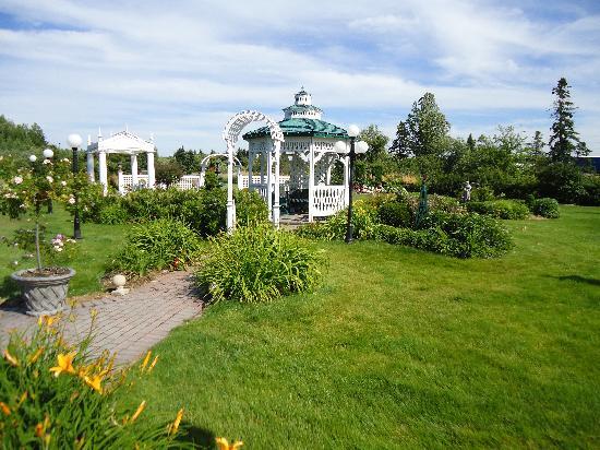 Plaza Motor Motel: garden