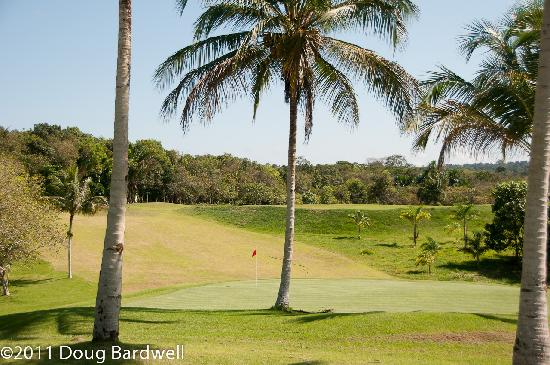Rio Preto da Eva, AM : So where else can you play golf in the jungle? How cool is that?