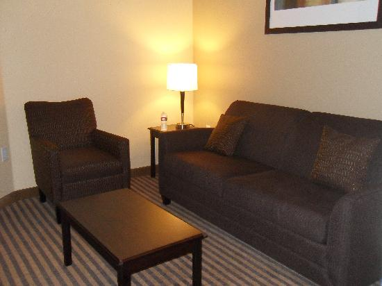 Comfort Suites DFW Airport: family area
