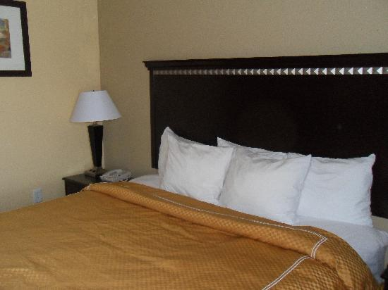 Comfort Suites DFW Airport: bed