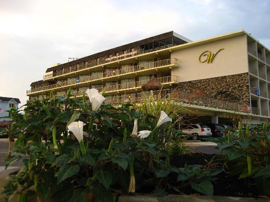 Waikiki Oceanfront Inn: Exterior