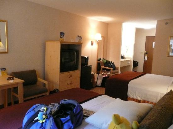 The Lodge at Mount Rushmore: Gives you an idea of room size
