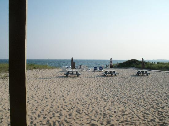 Sandbars on Cape Cod Bay: standing at my sliding door