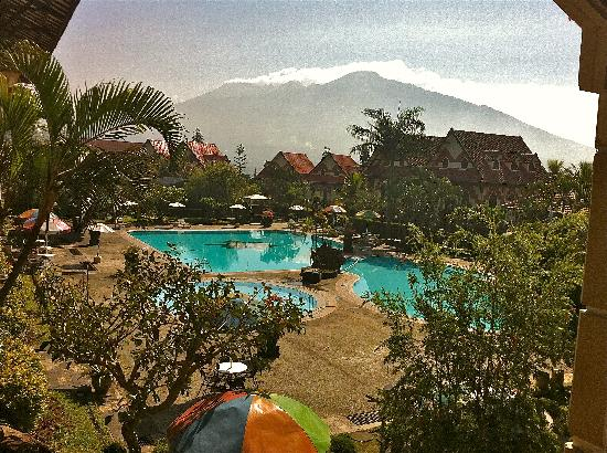 Royal Orchids Garden Hotel: have your breakfast with this view