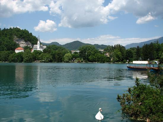 Andrea's Home: Lake Bled