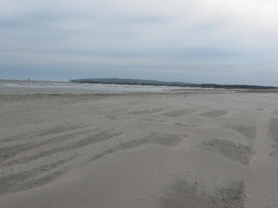 Camber, UK: beach across the road