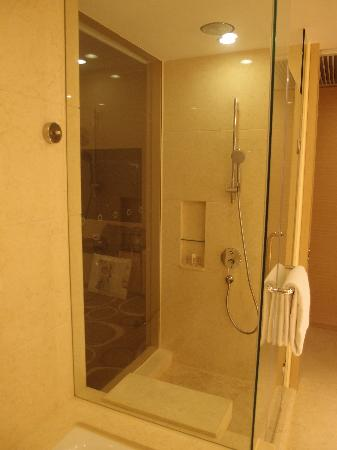 Crowne Plaza Hotel Hong Kong Causeway Bay: Shower
