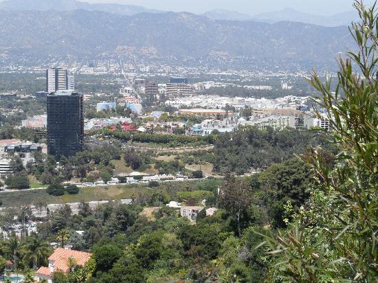 Mulholland Drive: Universal City