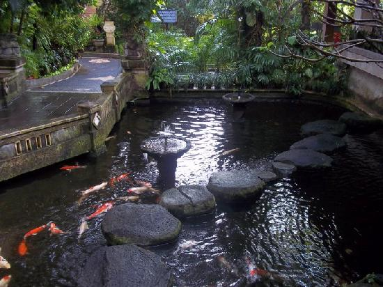 Risata Bali Resort & Spa: The pond was an amazing feature as you entered the resort