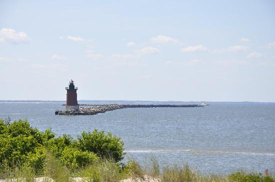 Cape Henlopen State Park: This beach is to your left when you pull in
