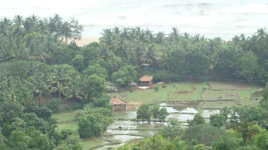 Gokarna, India: Long Shot at Nature