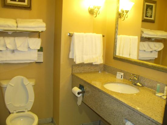 Comfort Suites Bloomsburg: bathroom