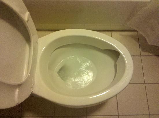 Hyatt Place Windward Parkway : toilet in despair