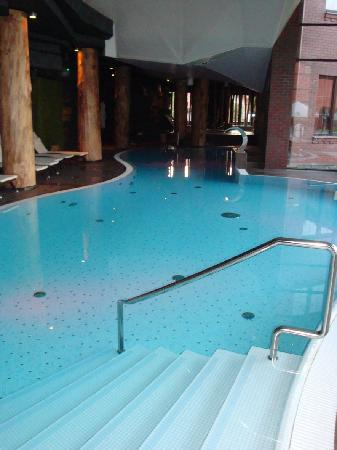 Hotel Zubrowka: Pool area