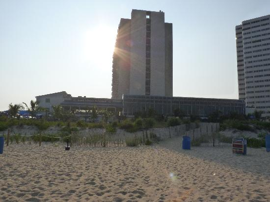 Clarion Resort Fontainebleau Hotel - Oceanfront: View from the beach