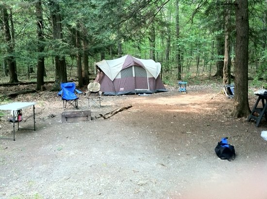 Chenango Valley State Park Campground: Our campsite