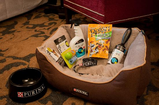 The Cheshire: Pet Friendly hotel