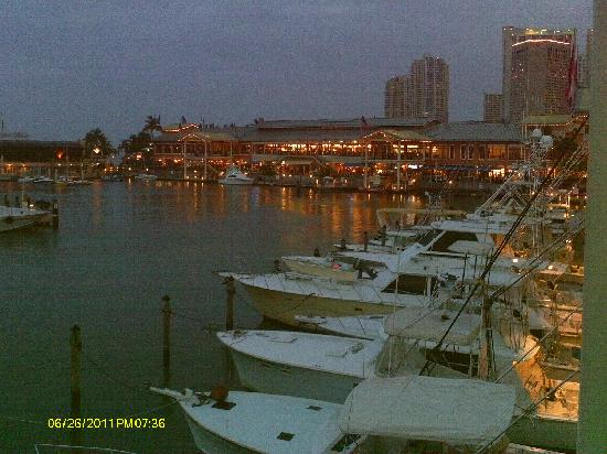Holiday Inn Port of Miami Downtown: bayside across street from hotel...
