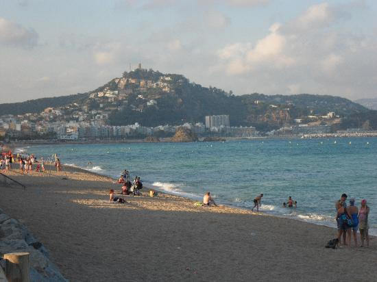 Camping Solmar: View from the beach