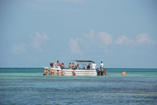 Isla Saona: Stoped at a natural pool in the middle of the sea