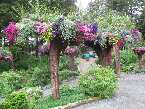 Glacier Gardens Rainforest Adventure: Famous upside down trees filled with flowers