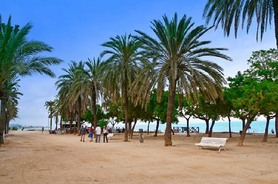 Ibis Barcelona Mataro: Playa