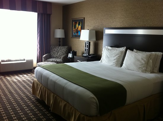 Holiday Inn Express Hotel & Suites Limerick: King Executive room