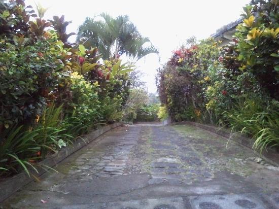 Taman Indrakila: Driveway entering the hotel
