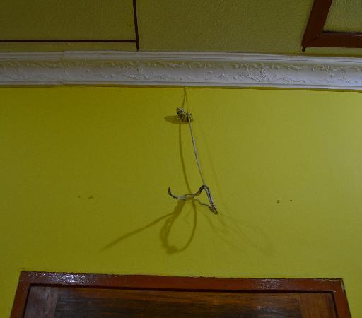 Sandy Beach Resort: wires hanging