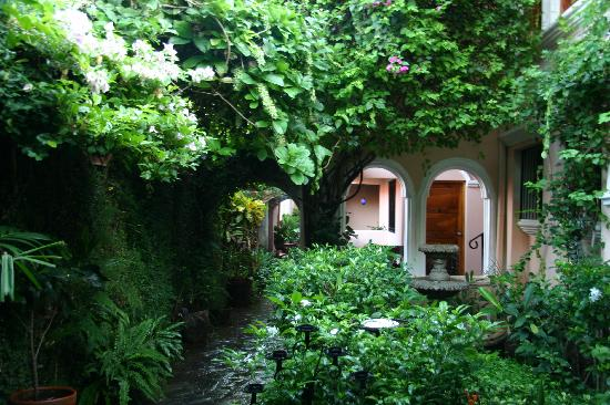 Casa San Francisco: Garden breakfast area