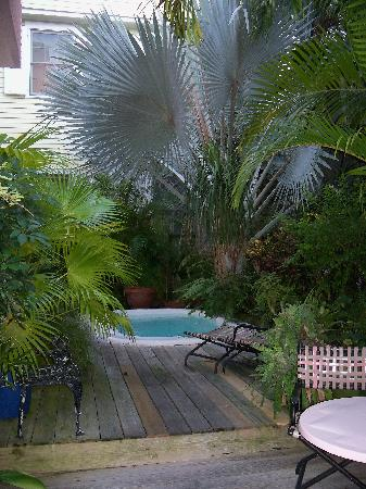 Key West Bed and Breakfast: Cooling or plunging pool